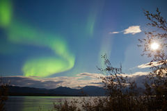 Northern Lights full moon over Lake Laberge Yukon. Swirls of northern lights, Aurora borealis, on night sky with full moon and stars over boreal forest taiga of Royalty Free Stock Photography