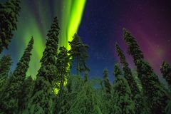 Northern lights in Finish Lapland. Northern lights image taken in Finish Lapland Royalty Free Stock Image