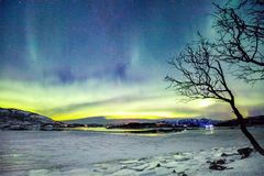 Northern lights. Incredible Northern lights Aurora Borealis activity above the coast in Norway royalty free stock image