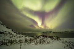 Northern Lights on the Kola Peninsula. Teriberka, Murmansk regio Royalty Free Stock Photography