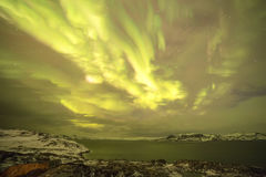 Northern Lights on the Kola Peninsula. Teriberka, Murmansk regio Royalty Free Stock Photography