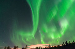 Northern Lights. Light up the sky in Anchorage, Alaska Royalty Free Stock Images