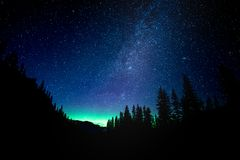 Star gazing the Northern Lights and Milkyway in Banff National Forrest. A surreal greenish blue hue illuminates the midnight sky. A peak into the Northern Lights royalty free stock photography