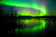 Free Northern Lights Mirrored On Lake Royalty Free Stock Photography - 17149387
