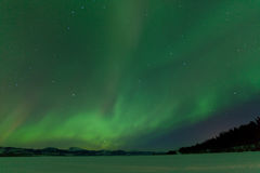 Northern Lights nightsky frozen Lake Laberge Yukon Royalty Free Stock Images