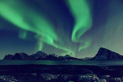 Northern Lights in Norway. Northern Lights, Aurora Borealis shining green in night starry sky at winter Lofoten Islands, Norway stock photo