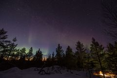 Northern lights over a forest in the hills of Inari, Finland royalty free stock photos