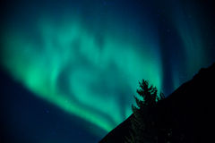 Northern Lights Rising Stock Image