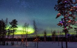 Northern Lights and stars over snow-covered forest royalty free stock photos