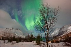 Northern Lights. In Tromso, Norway Stock Image
