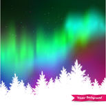 Northern lights and white spruce forest Stock Photo