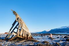 Northern Norway. Kids exploring shipwrecked wooden viking boat in Northern Norway Royalty Free Stock Photography