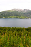 Northern Norway landscape Royalty Free Stock Images