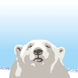 Northern polar bear. Polar bear against the northern landscape Stock Images