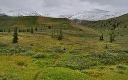 Northern Rocky Mountain Trail Stock Photos