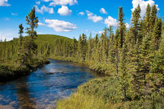Northern Saskatchewan Creek Stock Image