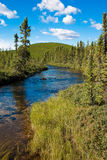 Northern Saskatchewan Creek Royalty Free Stock Image