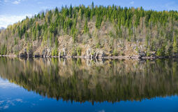 Northern spring - forest lake Stock Photos