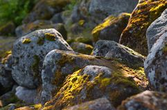 Northern stones. Russian North. Russian Lapland. Arctic nature Stock Photo