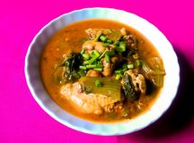 Northern Style Spicy Chicken Soup Royalty Free Stock Images