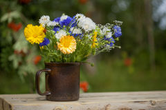 Northern summery bouquet. Of cornflowers,  flax capsules and marigold Royalty Free Stock Photos
