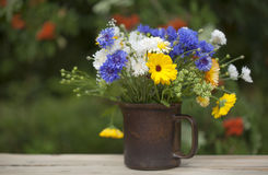 Northern summery bouquet. Of cornflowers,  flax capsules and marigold Royalty Free Stock Photo