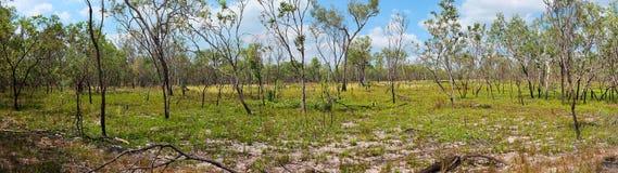 Northern Territory bush panorama Royalty Free Stock Image