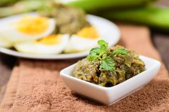 Northern Thai food Tum Makeua Yao. Grilled green eggplant pounding with chili and spices and eating with boiled egg Stock Image