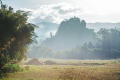 Northern Thailand. Rural landscapes in Northern Thailand stock image