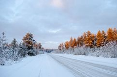 Northern winter road lit by the rays of the setting sun royalty free stock photo