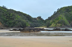 Northland coast Royalty Free Stock Photography