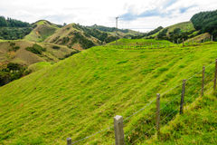 Northland Hills. Landscape of green hillls at the east side of Northland, North Island, New Zealand Stock Image