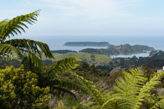 Northland, North Island, New Zealand. View of the ocean shore at the east side of Northland, North Island, New Zealand Stock Images