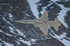 Northrop F-5E Tiger 2 Stock Photo