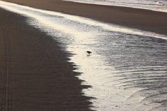 Northsea около Bureblinkert на пляже Ameland, Голландии Стоковые Фото