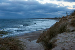 Northsea coast in Thy, Denmark. Dunes at the North sea coast in Denmark Stock Photography
