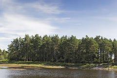Northumberland-Landschaft mit See und Bäumen lizenzfreie stockfotos