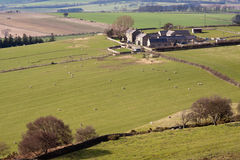 Northumbrian Farmyard in Landscape Royalty Free Stock Image