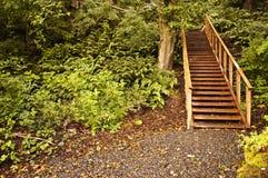 Northwest Arboretum Trail Royalty Free Stock Images