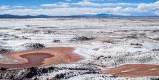 Northwest Argentina - Salinas Grandes Desert Landscape Royalty Free Stock Photo