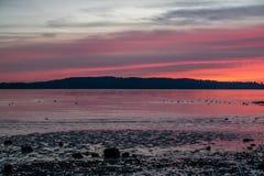 Northwest Shoreline Sunset 5 Stock Image