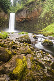 northwest Stillahavs- vattenfall Royaltyfria Bilder