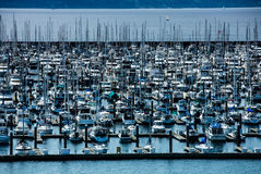 Northwest United States Marina. Birds eye view on marina with various docked sailboats in Seattle, Washington Royalty Free Stock Photo