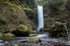 Northwest waterfall Royalty Free Stock Images