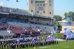 Northwestern Wildcats football Royalty Free Stock Photos