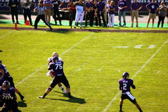 Northwestern Wildcats football Stock Photography