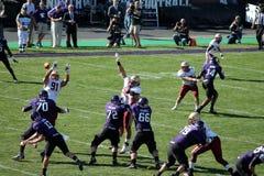 Northwestern Wildcats football Stock Photos