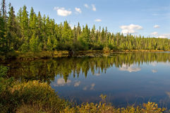 Northwoods Lake. Photograph of an early fall northwoods lake, surrounded by bog in northern Wisconsin with beautiful sky reflected in the water royalty free stock photo