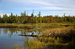 Northwoods Lake. Photograph of a lake in the northwoods of Wisconsin in early autumn with a hint of changing colors in the trees royalty free stock photo