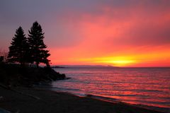 Northwoods Lake Superior Sunsest. Pine trees silhouetted by vivid pink colors of sunset cover in Northwoods Michigan royalty free stock photography